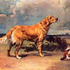 Kitchen Art Prints How Much Are Cabinets Maud Earl - Golden Retriever Print Global Gallery