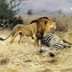 Southwest Living Rooms House Interior Design Pictures Room Wilhelm Kuhnert - A Lion With His Prey Art Print ...