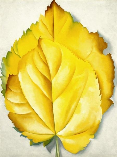 Georgia OKeeffe  2 Yellow Leaves Yellow Leaves 1928