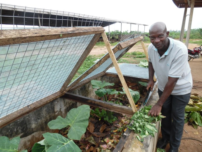 man from Ghana named Osei stands with his snail beds