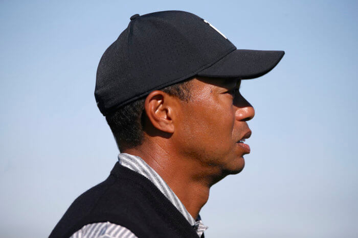 TIger Woods Profile