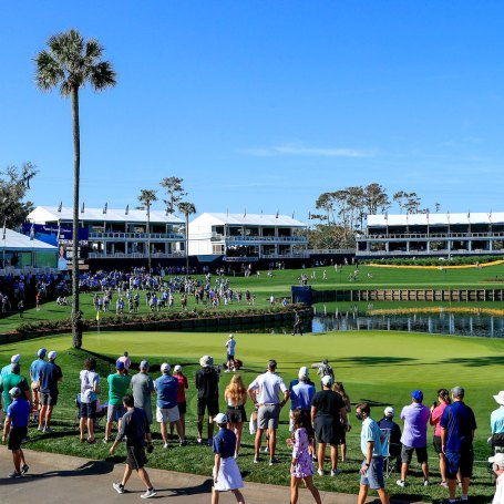 At TPC Sawgrass, The Buzz Is Real