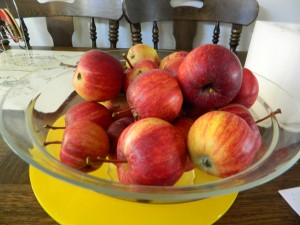 Bowl of apples from our garden Photo by JMorton
