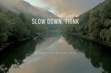 Slow down, think