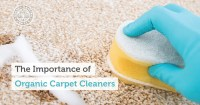 getting rid of new carpet smell  Floor Matttroy