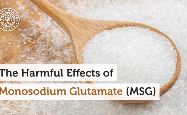 The Harmful Effects Of Monosodium Glutamate Msg