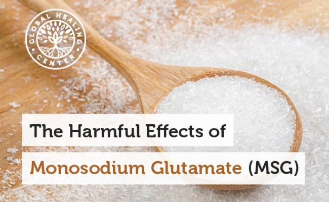 The Harmful Effects Of Monosodium Glutamate Msg