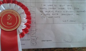 Bailey 2nd dressage outing judge comments