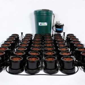 IWS 48 Pot Dripper System