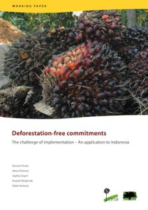 Deforestation-free commitments: The challenge of implementation – An application to Indonesia