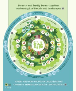 Sustainable landscape infographic - Food & livelihoods