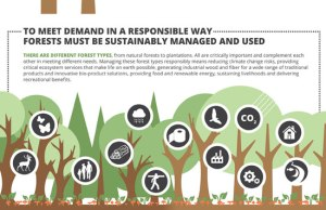 Forests, market and demand infographic - Measuring Progress