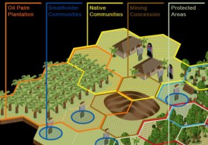 Land sector simulation - Rights