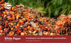 Investing in no-deforestation commodities: The case of palm oil