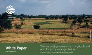 Tenure and governance in agricultural and forestry supply chains: Undertaking risk-based due diligence