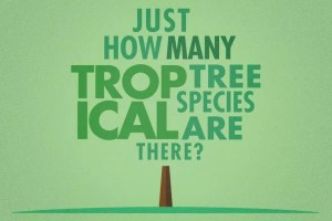 So, that's how many tropical tree species?