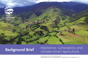 Background Brief – Resilience, vulnerability and climate-smart agriculture