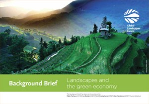 Background Brief – Landscapes and  the green economy