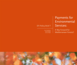 Payment for services: a way forward for mediterranean forest