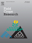 Evaluation of climate adaptation options for Sudano-Sahelian cropping systems