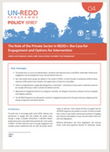 Policy Brief on 'The Role of the Private Sector in  REDD+: the Case for Engagement and Options for  Intervention.'