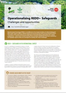 Operationalizing REDD+ Safeguards: Challenges and opportunities