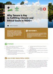 Why tenure is key to fulfilling climate and ethical goals in REDD+