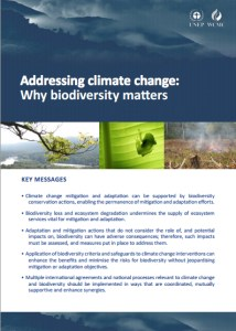 Addressing climate change: Why biodiversity matters