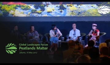 Community perspectives and priorities in peatlands