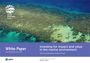 Investing for impact and value in the marine environment: The Sustainable Ocean Fund