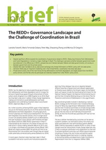 The REDD+ Governance Landscape and the Challenge of Coordination in Brazil