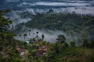 Global Landscapes Forum forest landscape restoration and gender equality