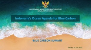 Indonesia's Ocean Agenda for Blue Carbon
