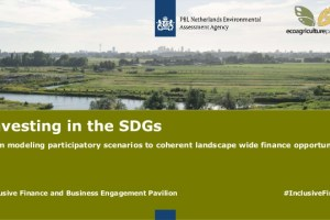 Investing in the SDGs: from modeling participatory scenarios to coherent landscape wide finance opportunities