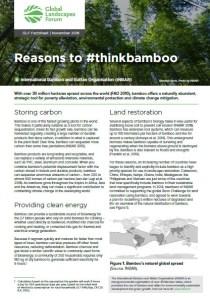Reasons to #thinkbamboo