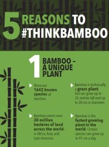 5 reasons to think bamboo