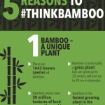 5 reasons to think bamboo