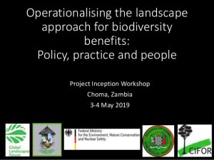 Operationalising the landscape approach for biodiversity benefits: Policy, practice and people