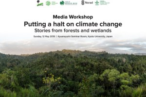 Putting a halt on climate change: Stories from forests and wetlands
