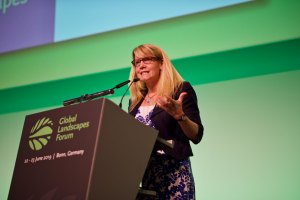 Conservation International, WRI, EFI, Climate Focus Join GLF as charter members