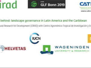 No one left behind: Landscape governance in Latin America and the Caribbean