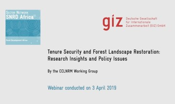 Linking Tenure Security and Forest Landscape Restoration — An Example from Madagascar