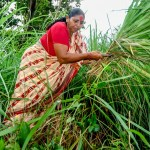Why land tenure must be at the center of climate talks