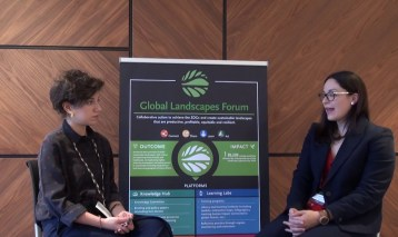 Interview with Stephanie Avalos – GLF at COP24