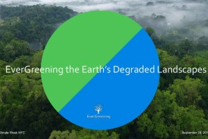 EverGreening the Earth's Degraded Landscapes