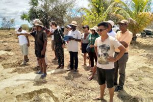 Toward a pan-African forest and landscape restoration exchange
