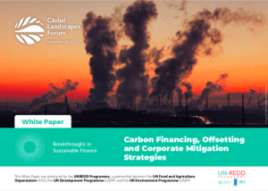 Carbon Financing, Offsetting and Corporate Mitigation Strategies – White paper