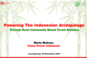 Powering The Indonesian ArchipelagoThrough Rural Community Based Forest Biomass