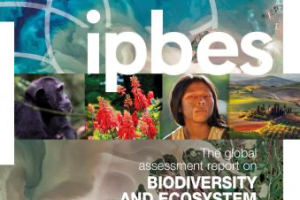 The Global assessment report on Biodiversity and Ecosystem Services