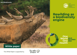 Rewilding as a biodiversity engine